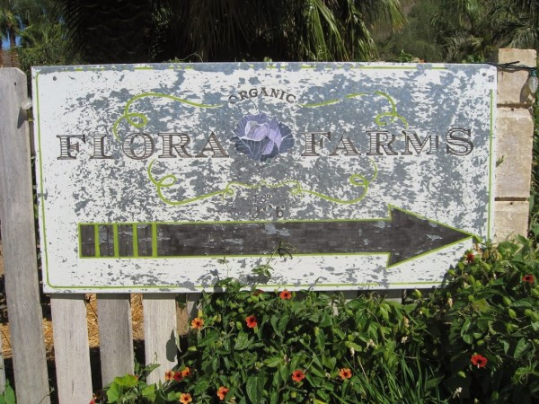 Flora Farms sign Baja