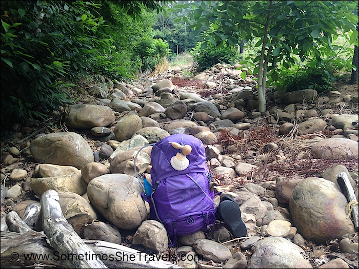 Purple backpack on rocky streambed