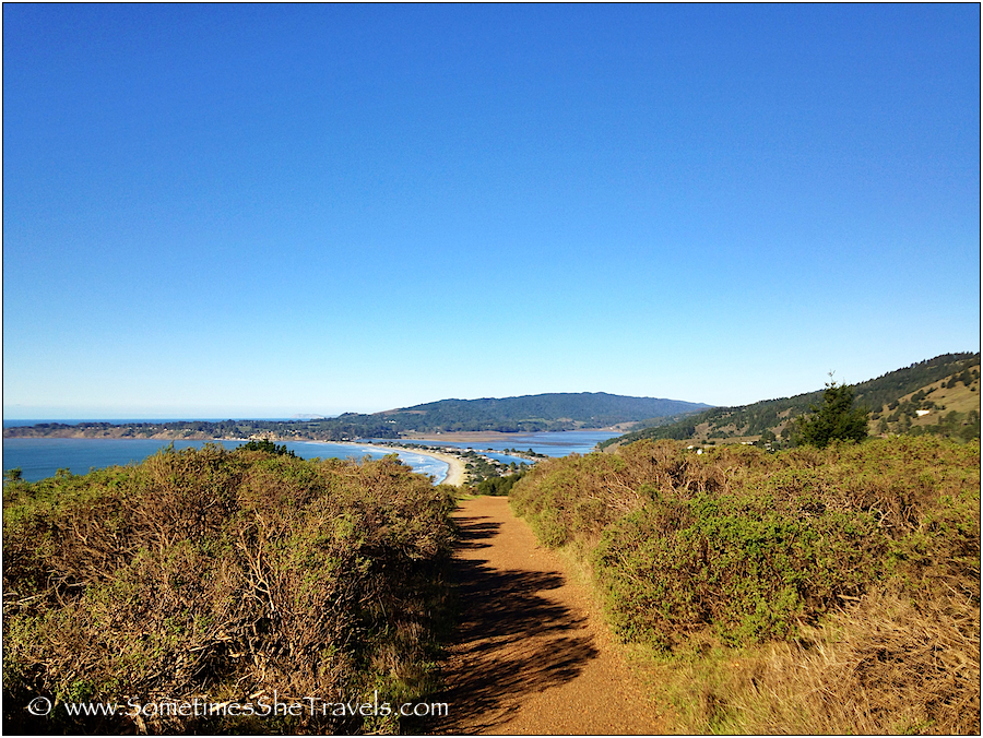 Trail through scrub with beach and ocean in background