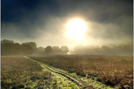 Morning Sun Bear Valley Trailhead
