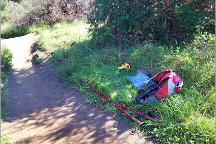 Backpack, poles, banana by hiking trail