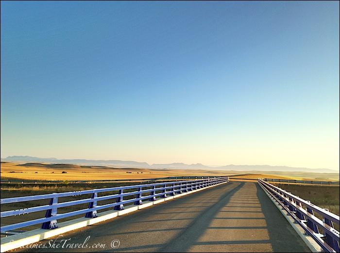 Camino de Santiago | Highway