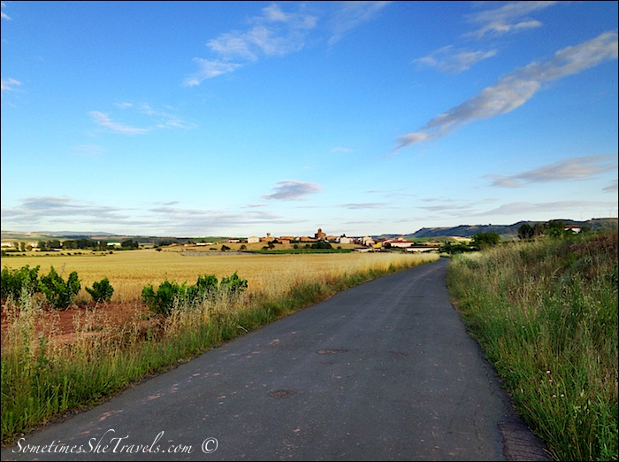 camino de santiago road through fields 4