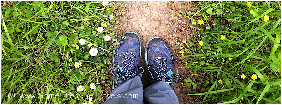 Brand new Brooks last spring on a Sonoma Coast State Park hike