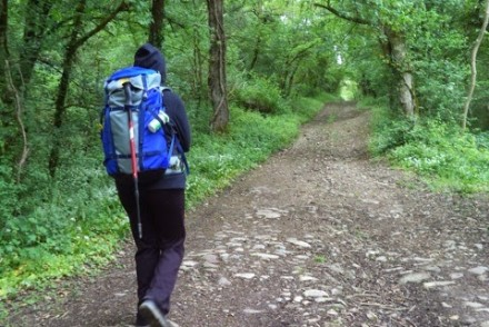 Woman in backpack on trail through green forest