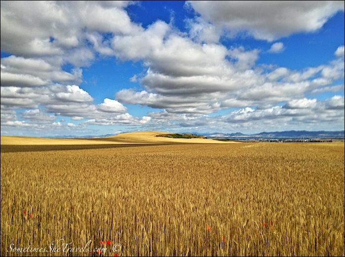 camino de santiago fields and sky 2