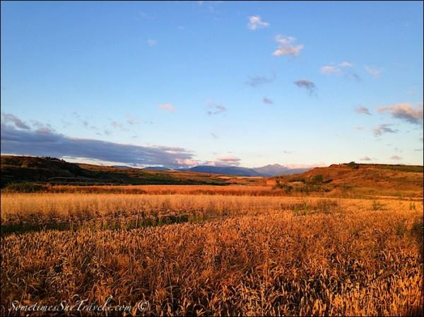 camino de santiago morning light on fields