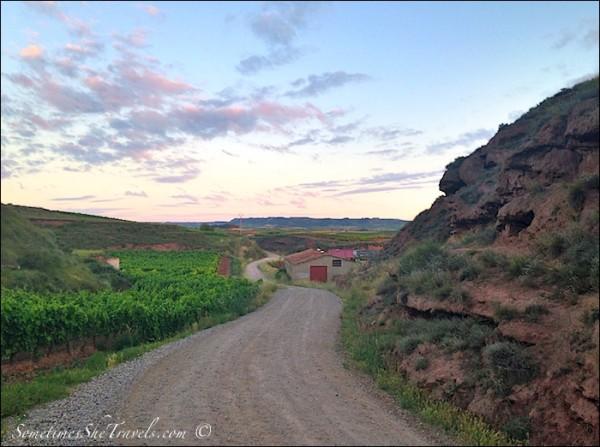 camino de santiago road out of nájera at dawn
