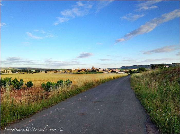 camino de santiago road through fields 4