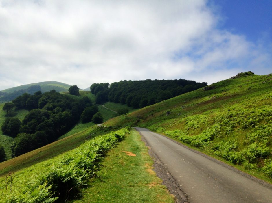 Country road through green hills.