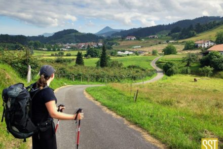 Woman wearing backpack and holding trekking poles looks across a valley road